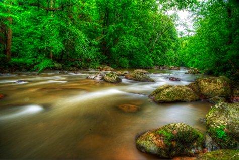Dream River.jpg